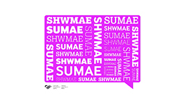Celebrating Diwrnod Shwmae! Sumae! at the Assembly