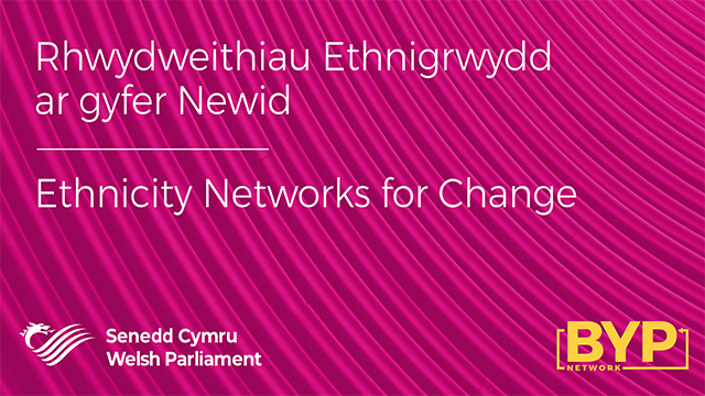 Ethnicity Networks for Change