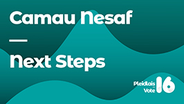 Vote16 – next steps